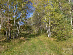 rent-cottage_Chesterville_111458