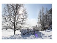 cottage-rental_aux-3-lucarnes_66604