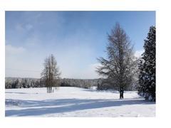 cottage-rental_aux-3-lucarnes_66608