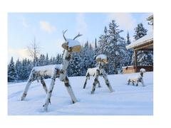 louer-chalet_Dudswell_67273