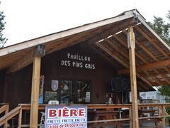 location-chalet_chalet-pavillon-des-pins-gris_68036