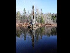 cottage-for-rent_eastern-townships_72987