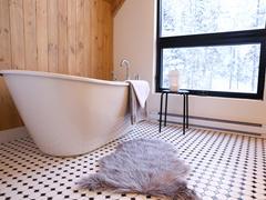 rent-cottage_Chertsey_113739
