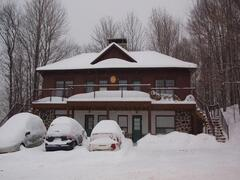 location-chalet_chalet-sous-bois-ski-in-ski-out_70365