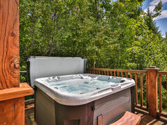 cottage-rental_chalet-l-everest-ski-spa-nature_95150