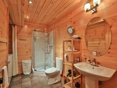 location-chalet_chalet-l-everest-ski-spa-nature_95165