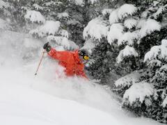 location-chalet_chalet-ski-nature-haut-avec-spa_73242