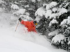 location-chalet_condo-ski-nature-en-haut-avec-spa_73199