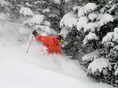 location-chalet_condo-ski-nature-mi-hauteurspa_73109