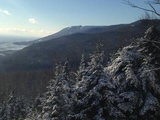 Condo Ski Nature Jardin avec Spa