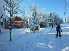location-chalet_15-min-ski-massif-2-condo-6-ch_74301