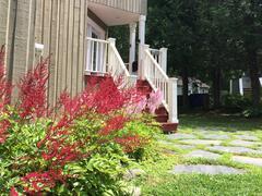 rent-cottage_Orford_93662