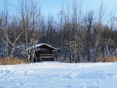 cottage-rental_chalet-nature_79878