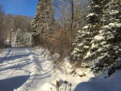 cottage-for-rent_mauricie_86463