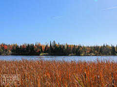 cottage-for-rent_eastern-townships_86199