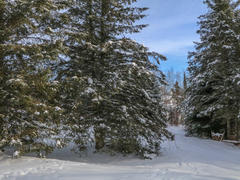 cottage-for-rent_eastern-townships_82659