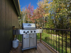 chalet-a-louer_charlevoix_113360