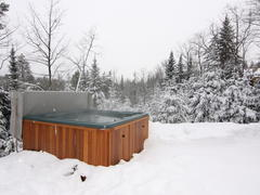 location-chalet_chalets-spa-nature-blue-bear_99715
