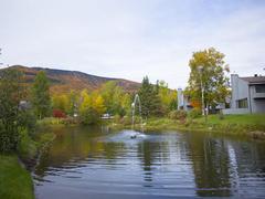 cottage-for-rent_quebec-region_96462