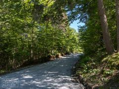 location-chalet_au-coeur-de-la-nature_93893