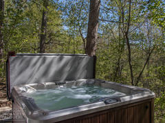 cottage-rental_au-canard-branchu-du-lac-brome_92225