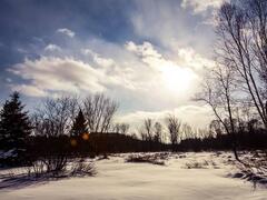 cottage-for-rent_quebec-region_89119