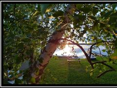 cottage-rental_havre-de-paix_90733