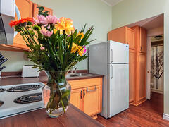 rent-cottage_Picton_102172