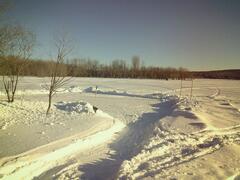 location-chalet_chalets-trois-lacs-foresta_106343