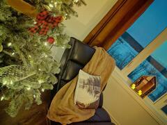cottage-for-rent_centre-du-quebec_106378