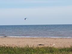 chalet-a-louer_littoral-acadien_109387