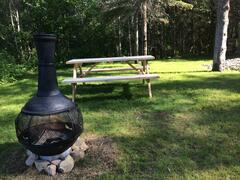 cottage-for-rent_charlevoix_98292
