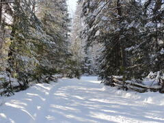 chalet-a-louer_lanaudiere_98896