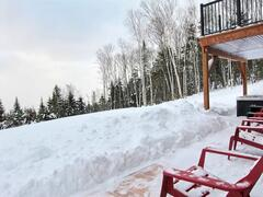 cottage-for-rent_charlevoix_100046