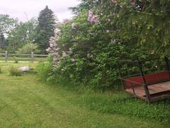 chalet-a-louer_charlevoix_102669
