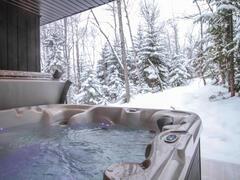 cottage-for-rent_charlevoix_99997