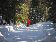 chalet-a-louer_charlevoix_101511