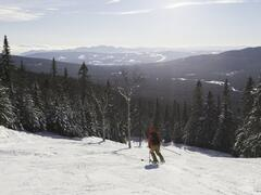 chalet-a-louer_charlevoix_101534