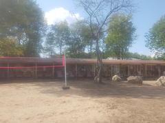 rent-cottage_St-Hippolyte_109849