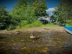 chalet-a-louer_chaudiere-appalaches_122849