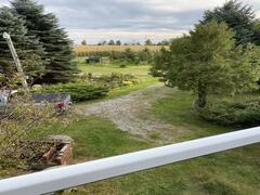 location-chalet_lakeviewcottageretreat_112205