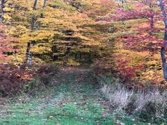 cottage-rental_chalet-oasis-boisee_111342