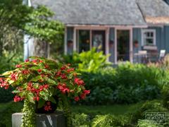 cottage-for-rent_centre-du-quebec_111374