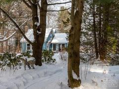 cottage-rental_la-maison-du-jardin_115986