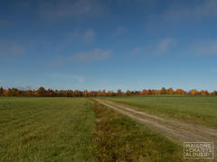 rent-cottage_Beaulac-Garthby_111564