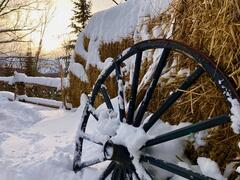 cottage-rental_le-boreal_115070