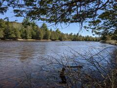 cottage-for-rent_lanaudiere_119540