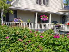 rent-cottage_Kamouraska_116140