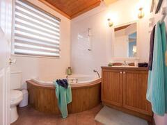 location-chalet_villa-vue-piscine-spa_118486
