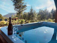 chalet-a-louer_charlevoix_120620